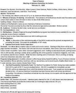 Icon of 20200211 Sr Adv Comm Minutes