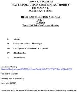 Icon of 20210302 Wpca Agenda