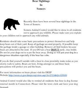 Icon of Bear-Precautions